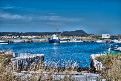 Ferryland Harbour