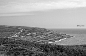 The endless road to the Cape Race Lighthouse