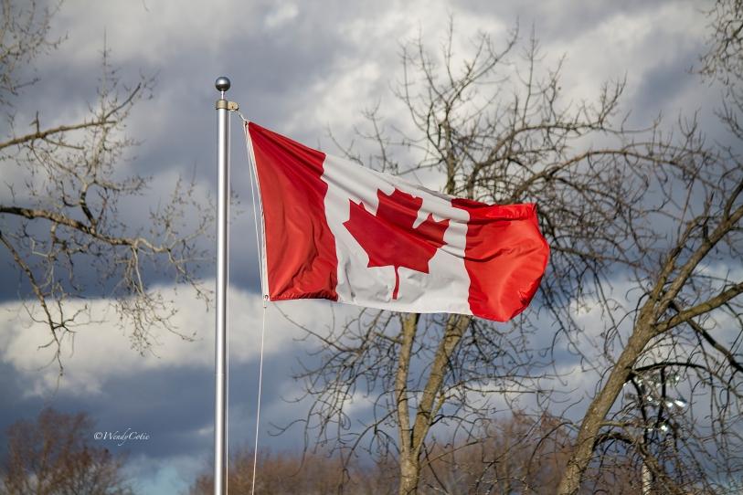 img_2965_canadianflag