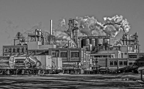 IndustrialDisease B&W