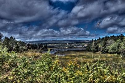 Codroy Valley Estuary