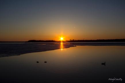 img_6491_sunsetducks