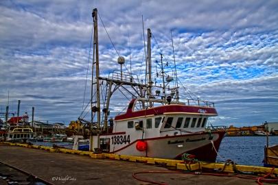 Bonavista Harbour, NL