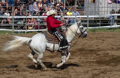 _MG_5765_CowboyGrayhorsegallop