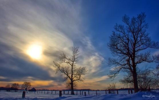 WinterSunset4