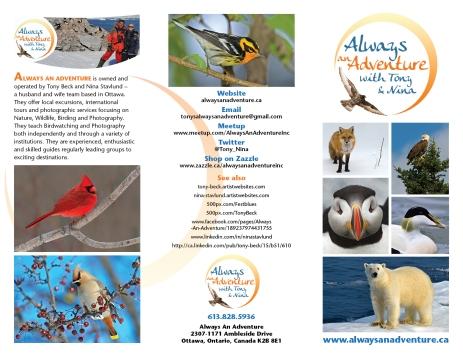 Brochure for Always An Adventure!